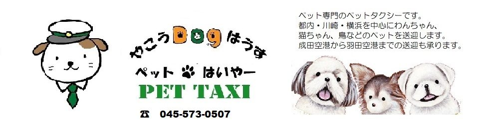 ペット専門タクシー 「やこうDogはうす ペットタクシー」Pet Taxi